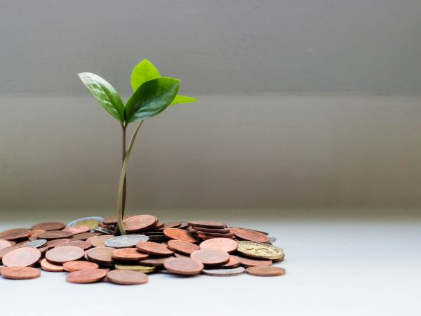 Financiación de un injerto capilar